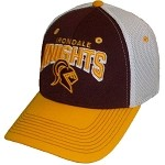 Irondale Knights Mesh 3D Cap